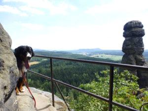 Barbarine mit Vreni. Mit Hund in der Sächsischen Schweiz - Wandern auf dem Malerweg.