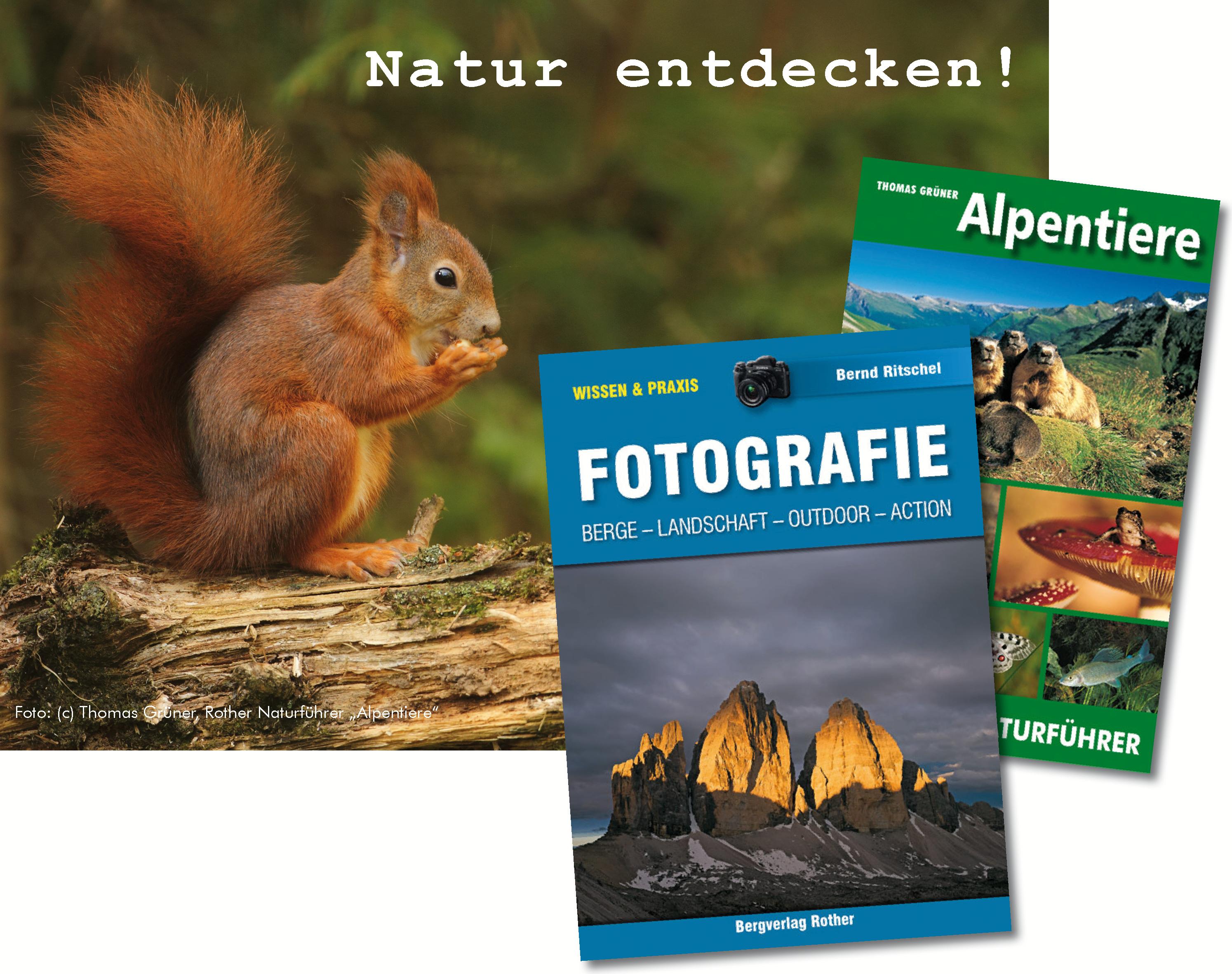 Natur entdecken_Bild