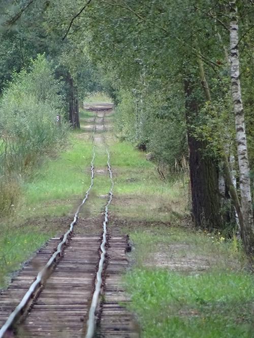 Alte Werkbahn Skalná © Franziska Rößner