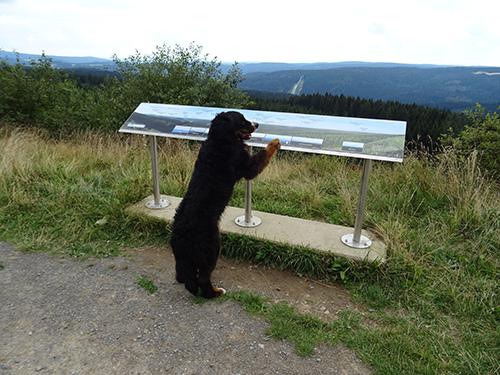 Panoramablick am Schneckenstein © Franziska Rößner