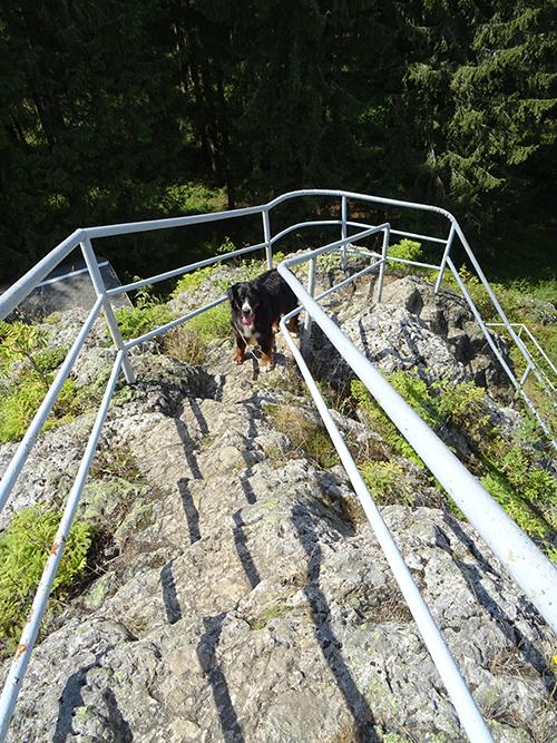 Aufstieg zum Schneckenstein © Franziska-Rößner