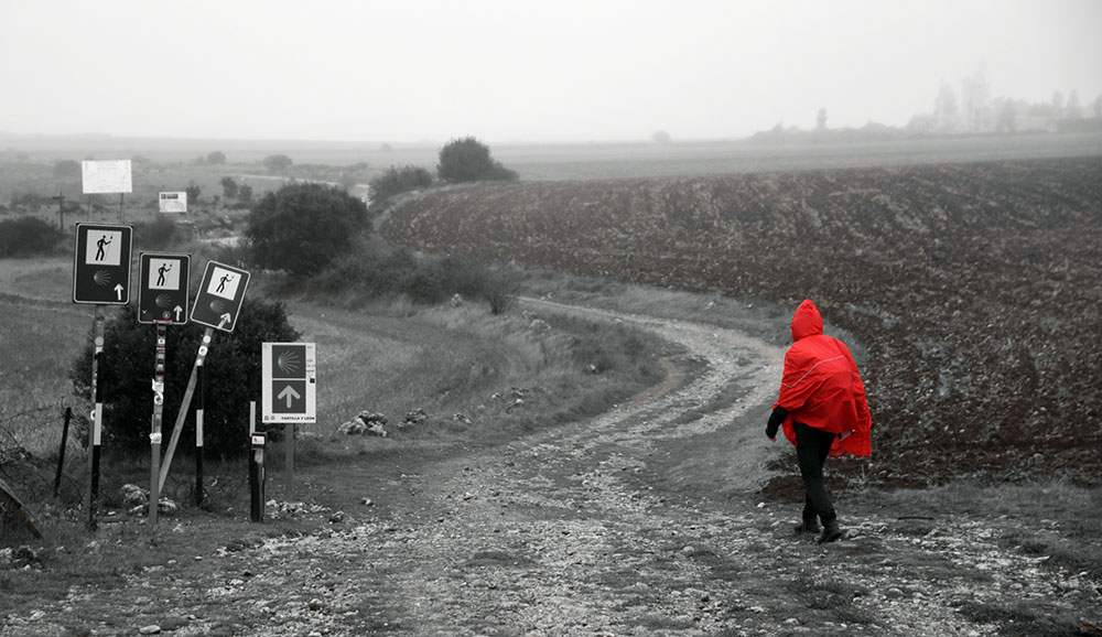 Ein harter Weg ©Foto: Cordula Rabe