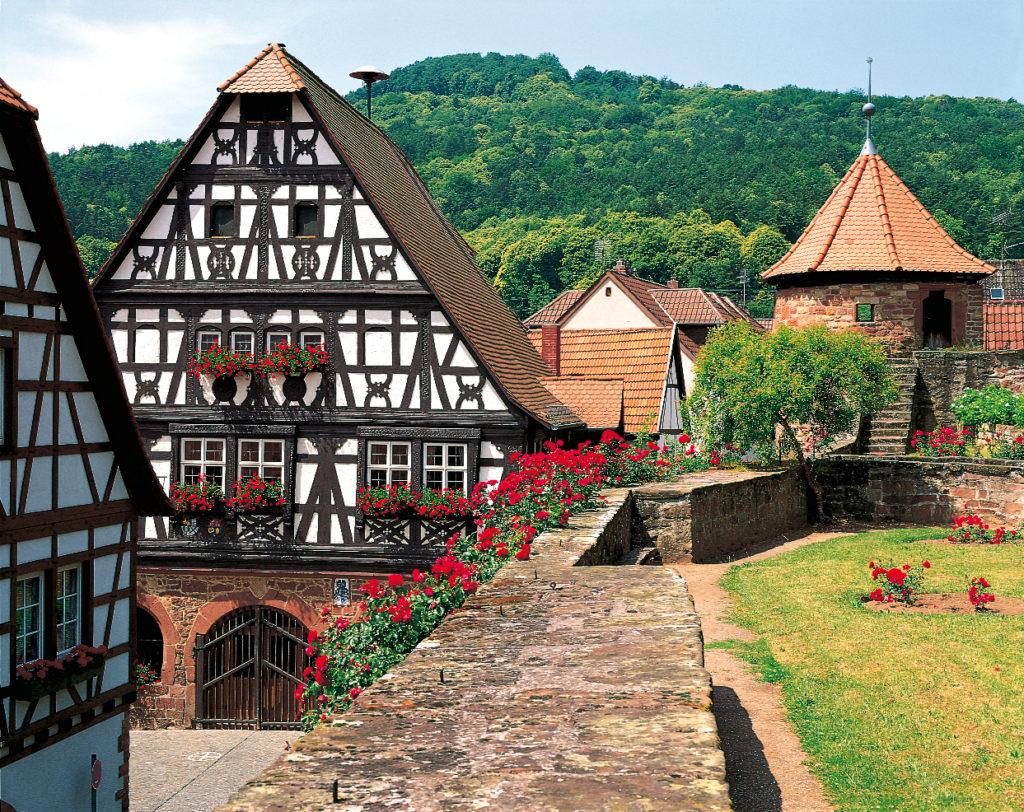 Herbstwanderung Pfalz