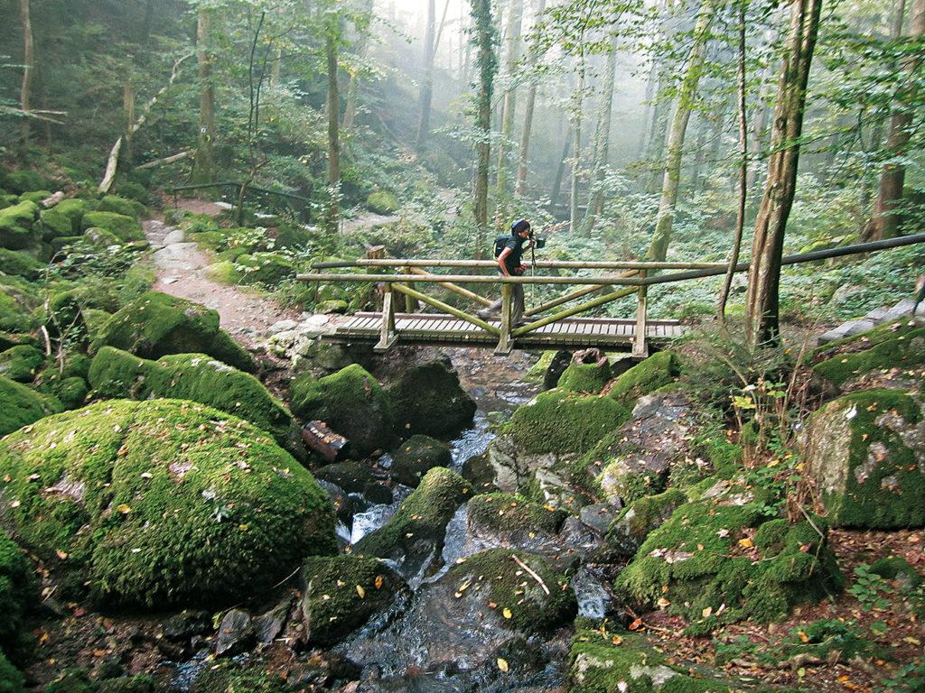 Herbstwanderungen in Deutschland: Schwarzwald